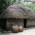 海洋博公園では琉球王国の歴史や沖縄文化が見られる