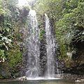 亜熱帯のジャングルへ大自然の中にあるター滝