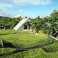 沖縄・西表島のミトレアキャンプ場はシャワーがついて700円で泊まれる