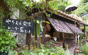 人気の森カフェ