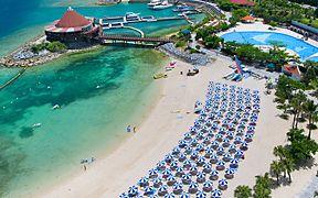 美しく並んだビーチパラソル